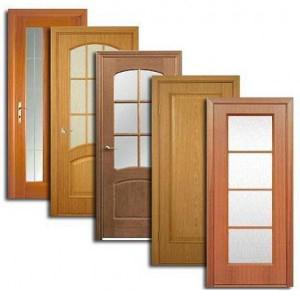 Двери, дверные блоки Колышлея