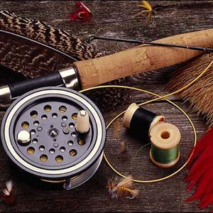 Охотничьи и рыболовные магазины Колышлея